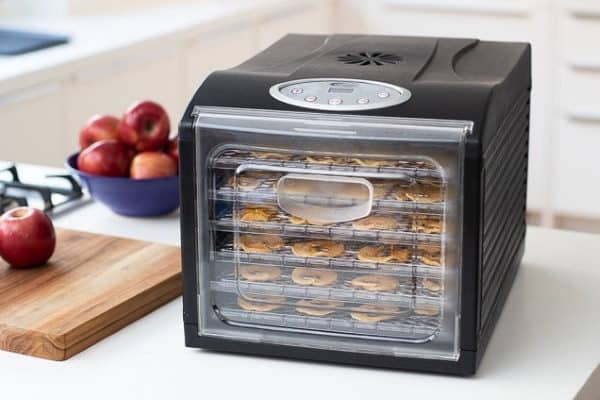 Best food dehydrator for delicious snacks