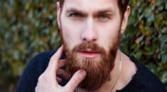 beardilizer review